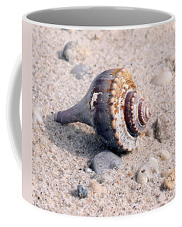 Coffee Mug featuring the photograph Shell by Karen Silvestri