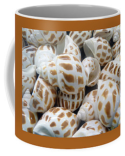 Shells - 7 Coffee Mug