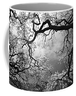 Sheltering Sky Coffee Mug by Laurie Search