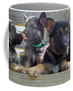 Shepherd Pups 5 Coffee Mug