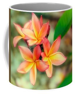 Sherbet Coffee Mug
