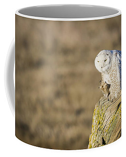 She's Got The Look Coffee Mug