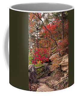 Shifting Colors Coffee Mug