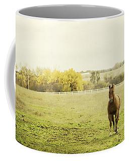 Shiloah On The Run Coffee Mug