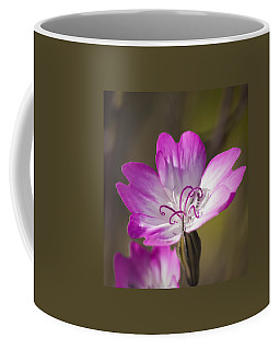 Shocking Pink Chenille Coffee Mug