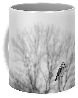 Short-eared Owl In Black And White Coffee Mug