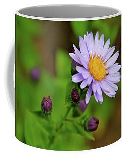 Showy Aster Coffee Mug