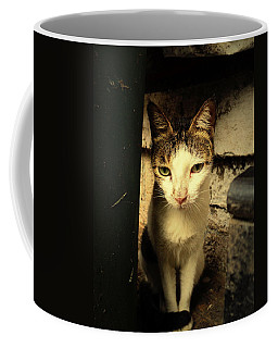Shy Cat Coffee Mug