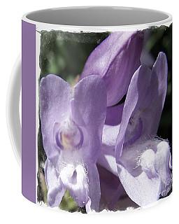 Shy Little Violets Coffee Mug