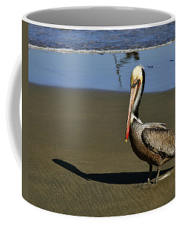 Shy Pelican Coffee Mug