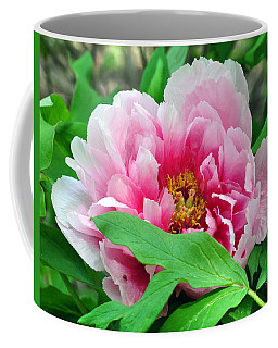 Shy Peony Coffee Mug