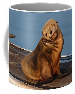 Shy Sea Lion Pup  Coffee Mug