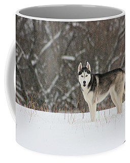 I've Been Spotted Coffee Mug