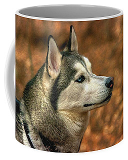 Coffee Mug featuring the photograph Siberian Husky by Dennis Baswell