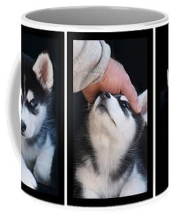 Siberian Husky Puppies Mans Best Friend Coffee Mug