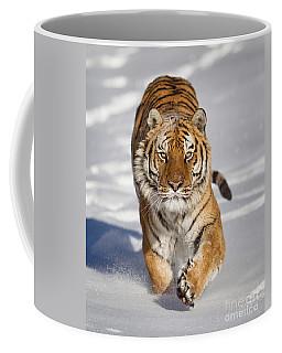 Siberian Tiger Coming Forward Coffee Mug