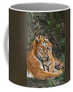 Siberian Tiger Mother And Cub Endangered Species Wildlife Rescue Coffee Mug