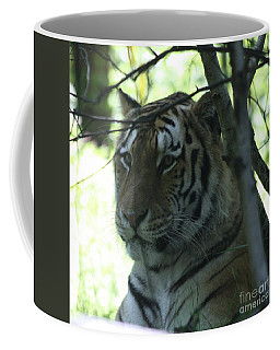 Siberian Tiger Profile Coffee Mug by John Telfer
