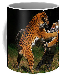 Coffee Mug featuring the photograph Siberian Tigers In Fight by Nick  Biemans