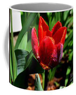 Sign Of Spring Coffee Mug