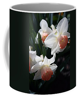 Coffee Mug featuring the photograph Signs Of Spring by Kay Novy