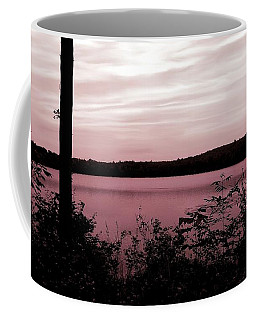 Coffee Mug featuring the photograph Silk And Champagne by Danielle R T Haney
