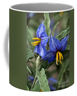 Coffee Mug featuring the photograph Silver Leaf Blooms by Mae Wertz