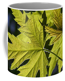 Silver Maple Coffee Mug by Ernie Echols
