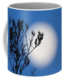 Coffee Mug featuring the photograph Silver Sage by Jim Garrison