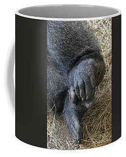Coffee Mug featuring the photograph Silverback Toes by Robert Meanor