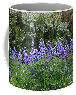 Coffee Mug featuring the photograph Silvery Lupine Black Canyon Colorado by Janice Rae Pariza