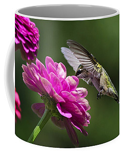 Coffee Mug featuring the photograph Simple Pleasure Hummingbird Delight by Christina Rollo
