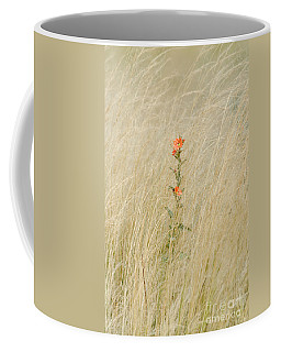 Simple Splash Of Color Coffee Mug