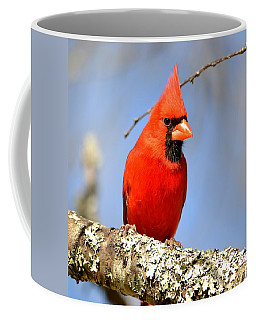 Coffee Mug featuring the photograph Simply Red by Deena Stoddard