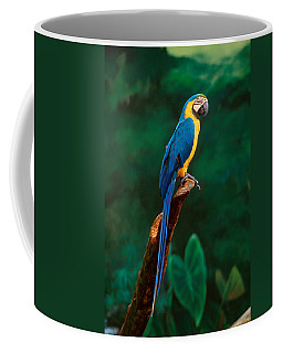 Singapore Macaw At Jurong Bird Park  Coffee Mug