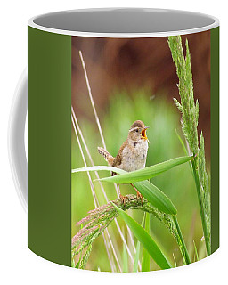 Singing For A Companion Coffee Mug