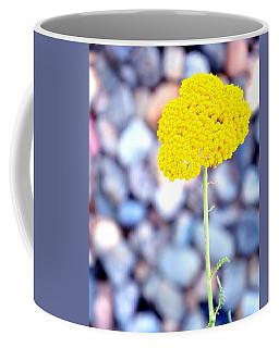 Single 16139 Coffee Mug