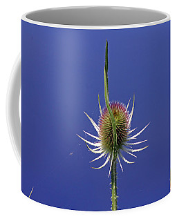 Single Teasel Coffee Mug
