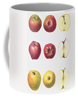 Six Apples Coffee Mug