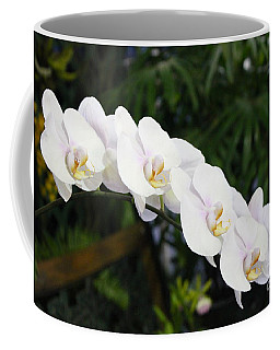Coffee Mug featuring the photograph Tranquility by The Art of Alice Terrill