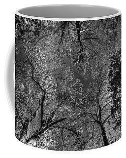 Skeletal Sky Coffee Mug