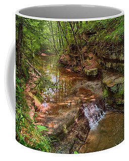 Skillet Creek Coffee Mug by Jonah  Anderson