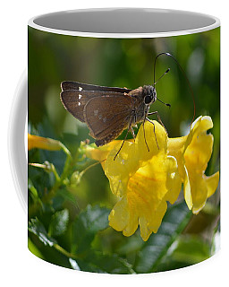 Coffee Mug featuring the photograph Skipper Butterfly 2 by Debra Martz