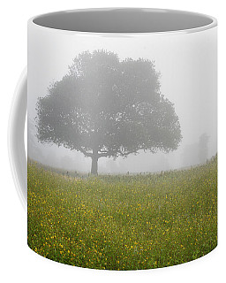 Skc 0056 Tree In Fog Coffee Mug by Sunil Kapadia