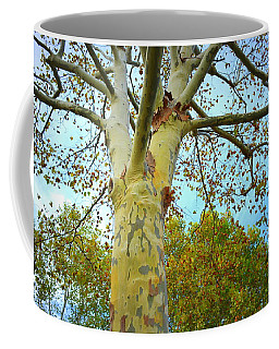 Sky High Coffee Mug by Kathy Barney