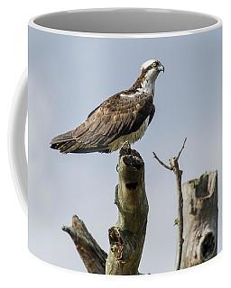 Sky Hunter 2 Coffee Mug