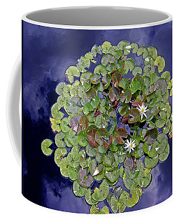 Coffee Mug featuring the photograph Sky Lilies by Zafer Gurel