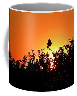 Sky Watcher Coffee Mug