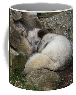 Sleeping Arctic Fox Coffee Mug