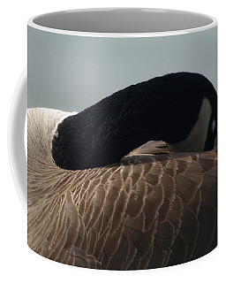 Sleeping Canada Goose Coffee Mug
